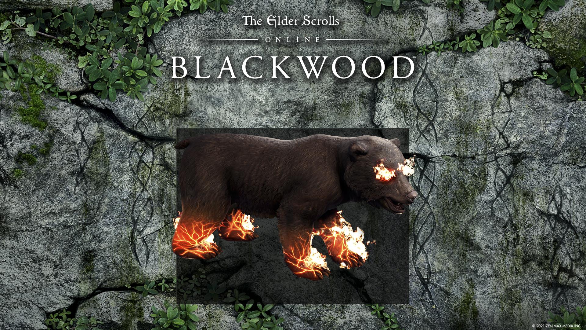 Elder Scrolls Online: Blackwood - imagen de incentivos de reserva