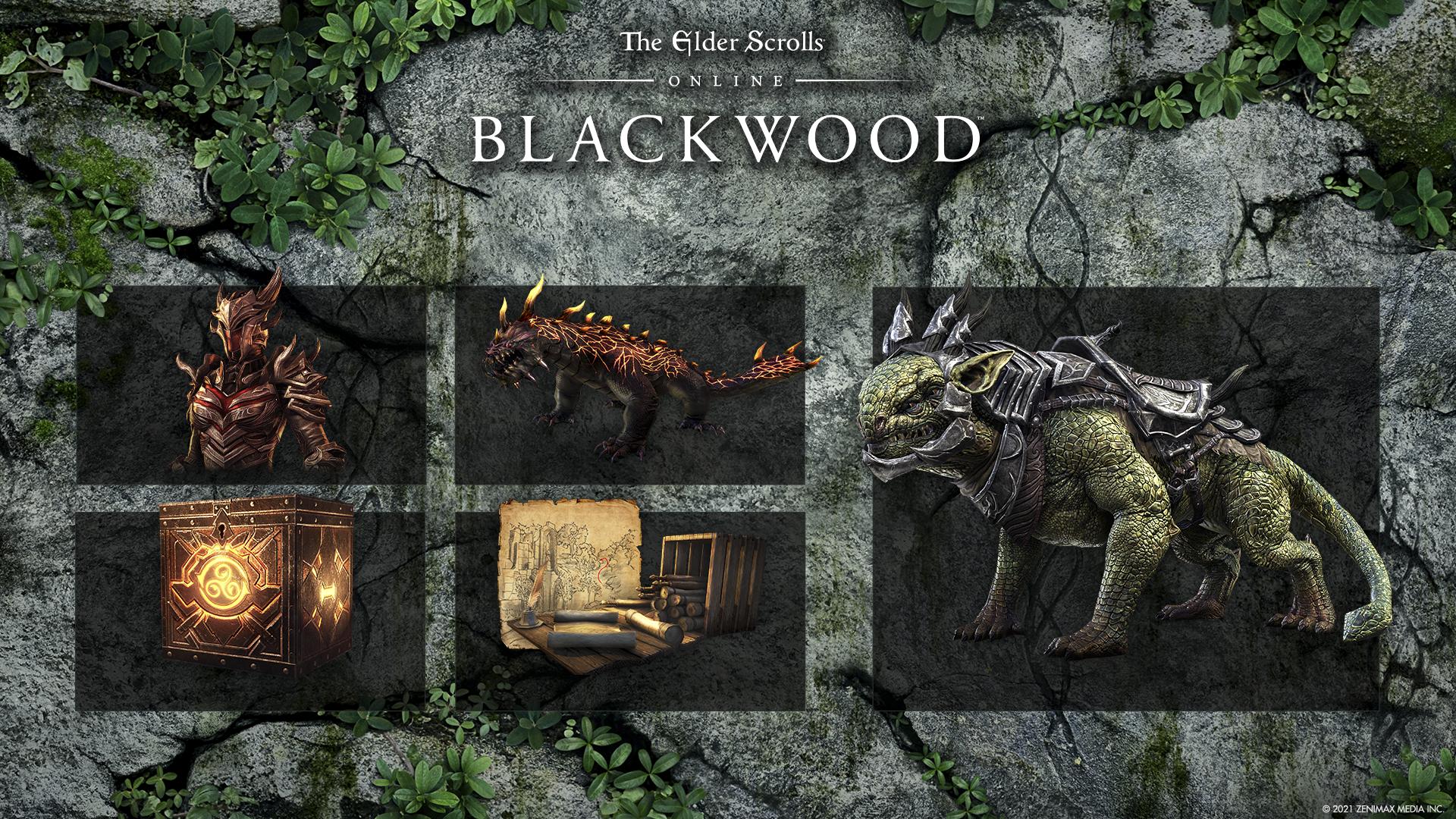 Elder Scrolls Online: Blackwood – slika spodbud ob prednaročilu