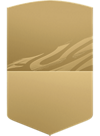 FIFA Ultimate Team - bronze players item image