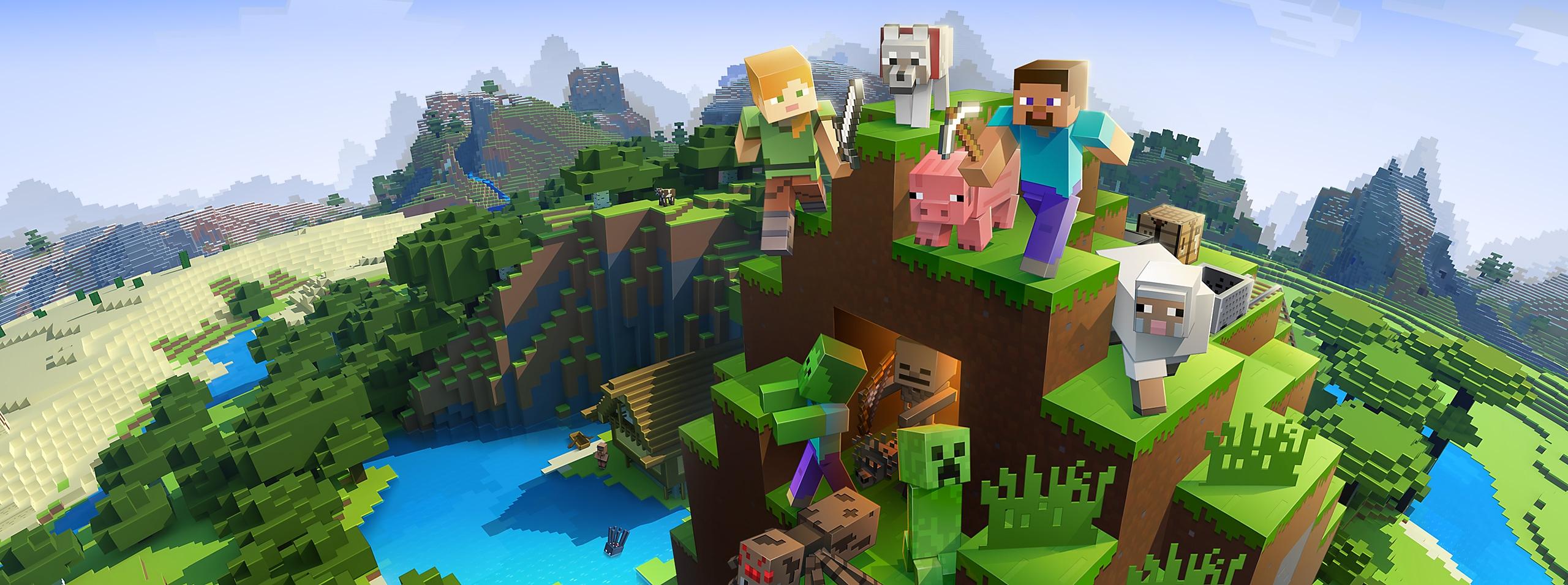 Minecraft - Hero Art