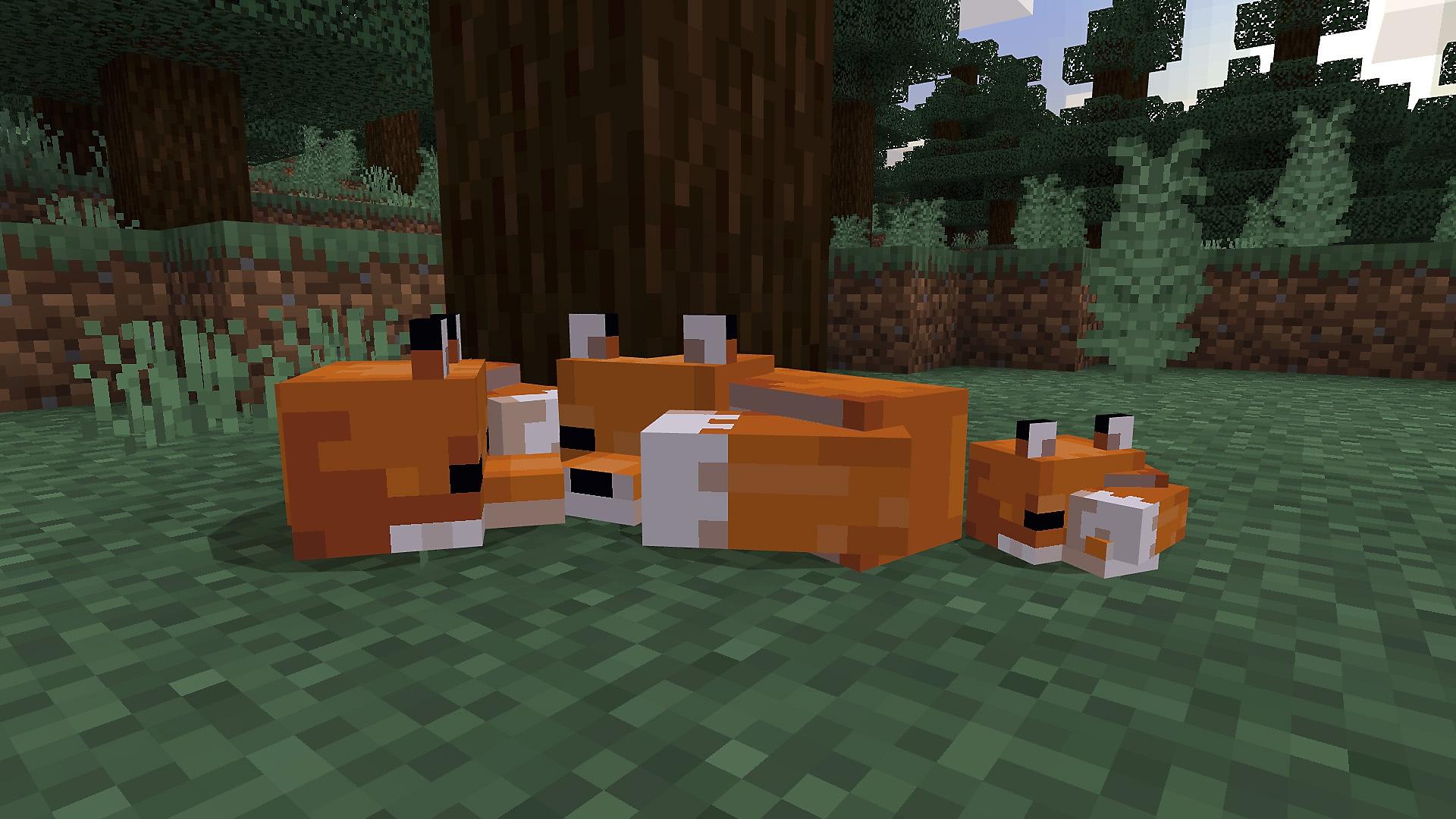 Minecraft – spelöversikt, bakgrundsblock