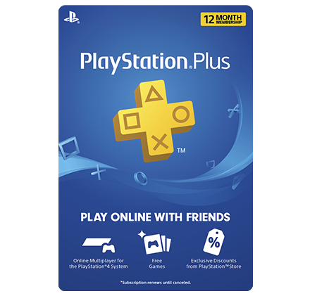12 months PS Plus subscription
