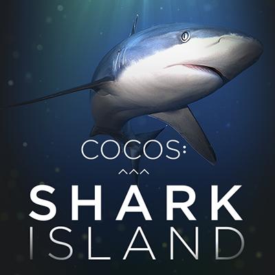 Cocos Shark Island