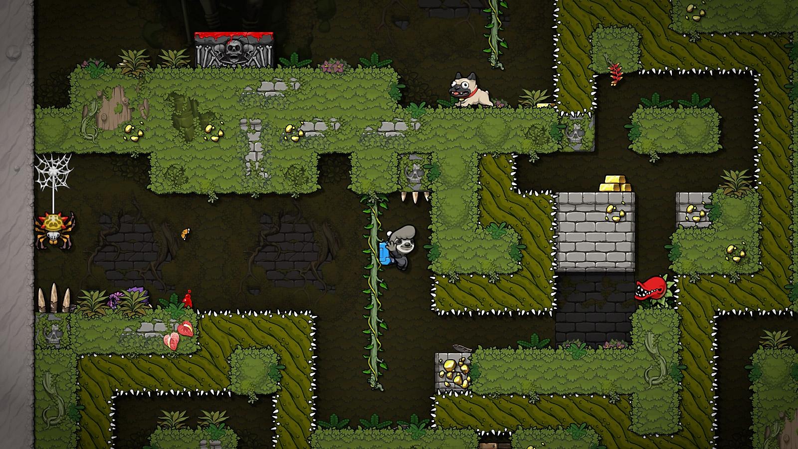 Spelunky 2 - Captura de pantalla - Perezoso bajando de una vid