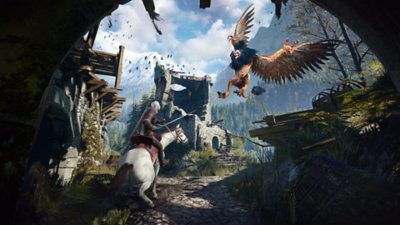The Witcher 3:‎ Wild Hunt