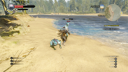Geralt fighting Drowners